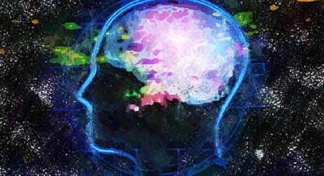 não bộ con người