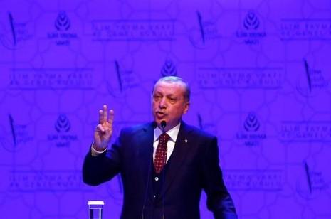 Thổ Nhĩ Kỳ cáo buộc Đức ủng hộ phe đảo chính - ảnh 1