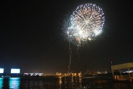 Lung linh pháo hoa chào năm mới Bính Thân - ảnh 10