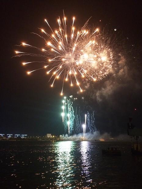 Lung linh pháo hoa chào năm mới Bính Thân - ảnh 9