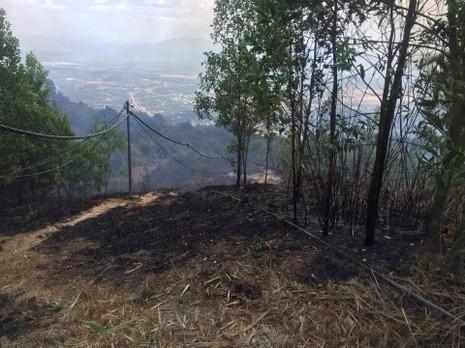 Đã dập tắt vụ cháy rừng trên khu di tích núi Chứa Chan - ảnh 2
