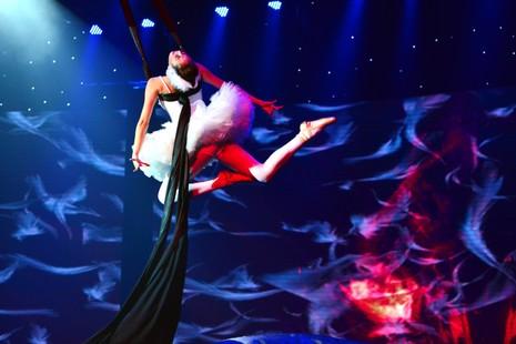 ST trở thành Nam vương đầu tiên của Bước nhảy hoàn vũ - ảnh 14