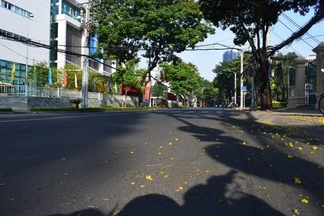 Sài Gòn thênh thanh, bình lặng trong sáng đầu năm - ảnh 13