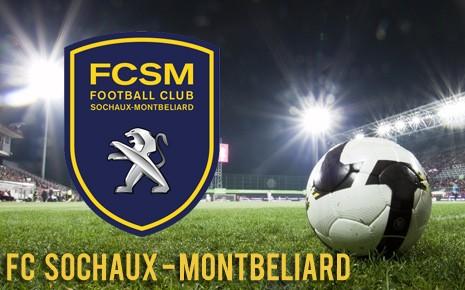 CLB Sochaux về tay tỉ phú Trung Quốc - ảnh 1