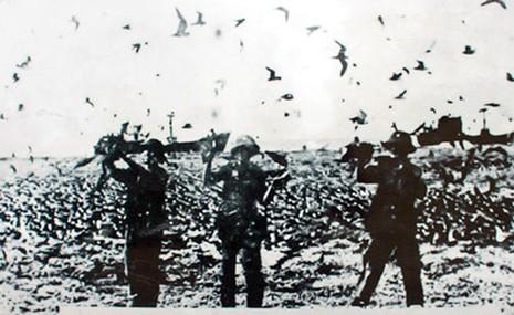 Ngày 25-4-1975: Giải phóng đảo Sơn Ca - ảnh 1