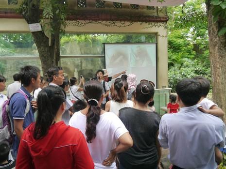 Thảo Cầm viên làm tiệc đầy tháng chào mừng 3 chú hổ trắng con - ảnh 6