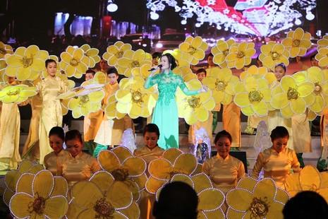 Đặc sắc lễ hội 'TP.HCM - Phát triển và Hội nhập' 2015 - ảnh 8
