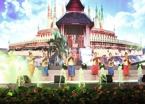 Đặc sắc lễ hội 'TP.HCM - Phát triển và Hội nhập' 2015 - ảnh 11