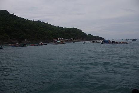 Cứu được nhiều ngư dân gặp nạn trên biển - ảnh 1