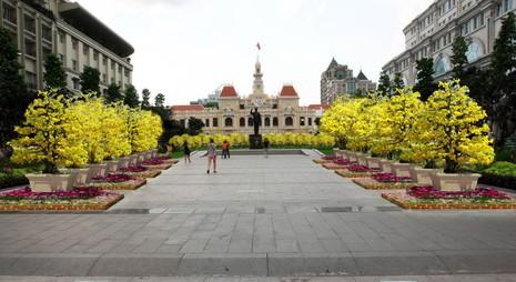 Lộ diện hình ảnh đường hoa Nguyễn Huệ tết Bính Thân 2016 - ảnh 6