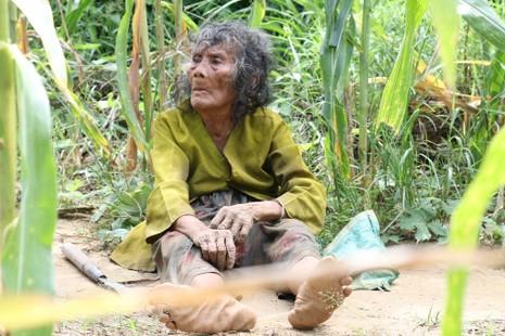Cụ bà 90 tuổi lưng còng, tóc bạc vẫn trồng ngô tỉa bắp - ảnh 4