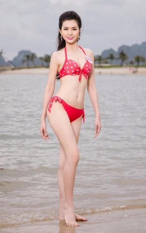 Vũ Thị Vân Anh năm nay 19 tuổi, đến từ Quảng Ninh, cao 1,70 m, đang theo học tại ĐH Ngoại ngữ Hà Nội