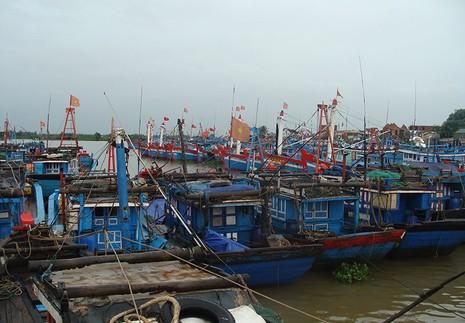 Cấm tàu thuyền xuất bến trước áp thấp nhiệt đới gần bờ - ảnh 1