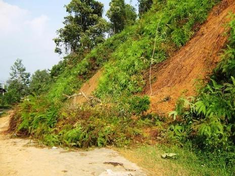 Quảng Nam: Mưa lớn, nhiều khu vực bị ngập nước - ảnh 1