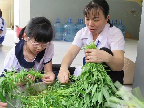 Độc đáo: Nhộn nhịp hội chợ rau sạch của học sinh tiểu học - ảnh 5