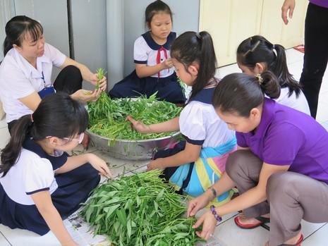 Độc đáo: Nhộn nhịp hội chợ rau sạch của học sinh tiểu học - ảnh 6