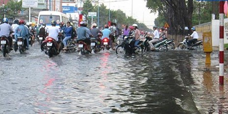Mưa lớn, nhiều tuyến phố ở Cần Thơ ngập nặng - ảnh 8