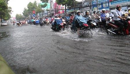 Mưa lớn, nhiều tuyến phố ở Cần Thơ ngập nặng - ảnh 12
