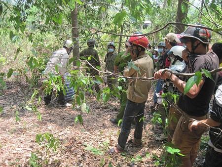 Phát hiện xác người đàn ông phân hủy trong rừng vắng - ảnh 1