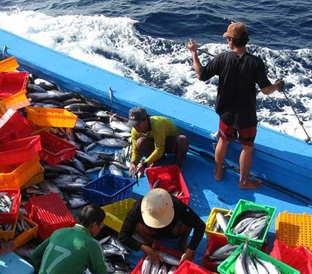 Tàu Trung Quốc muốn bít đường của ngư dân Việt  - ảnh 2