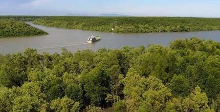 Mở đường xuyên rừng ngập mặn Cần Giờ - ảnh 1