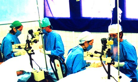 Việt Nam cam kết đến 2020 thanh toán bệnh gây mù lòa - ảnh 1