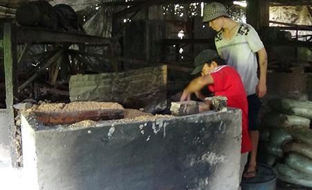Cơ sở chế biến bột cá hành hạ cả trăm hộ dân - ảnh 1