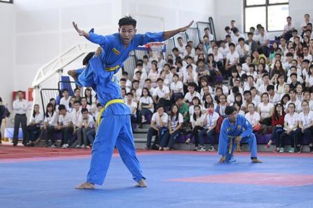 TP.HCM có thể tổ chức nhiều sự kiện võ thuật tầm cỡ - ảnh 3