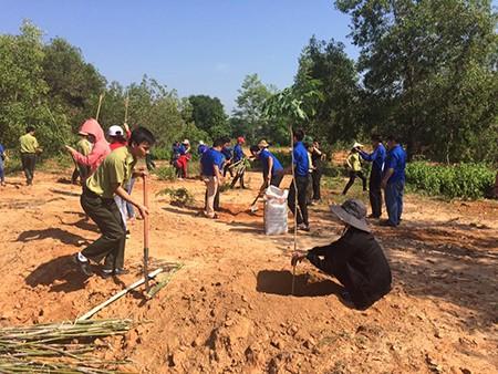 Hàng trăm cây xanh được trồng tại Vườn Quốc gia Yok Don - ảnh 1