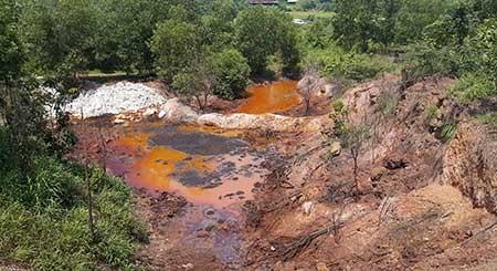 Chủ đất chứa rác độc ở Đồng Nai nói gì? - ảnh 1