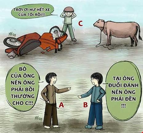 À Ra Thế kỳ 8: Tông phải bò, ai bồi thường? - ảnh 3
