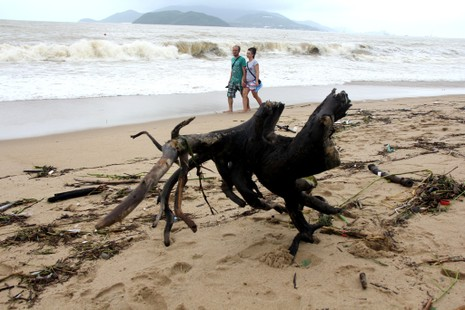 Bãi biển Nha Trang ngập rác trong những ngày mưa - ảnh 5
