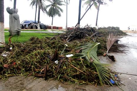 Bãi biển Nha Trang ngập rác trong những ngày mưa - ảnh 8