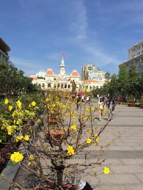 Ngắm đường hoa Nguyễn Huệ khoe sắc sáng 30 tết - ảnh 2