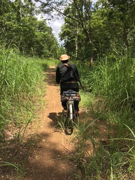 Vườn quốc gia Yok Đôn tuần tra rừng bằng xe đạp - ảnh 2