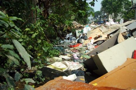 Dòng kênh quanh năm hôi thối ở thủ đô - ảnh 5