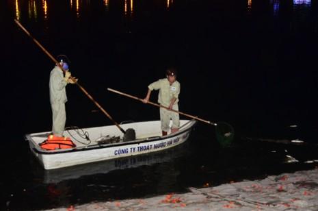 Hà Nội vớt nhiều tấn cá chết trong đêm - ảnh 1