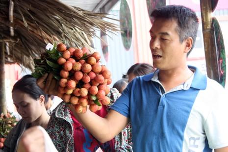 Người dân thủ đô chen nhau nếm thử vải thiều Bắc Giang - ảnh 6