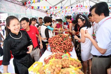 Người dân thủ đô chen nhau nếm thử vải thiều Bắc Giang - ảnh 1