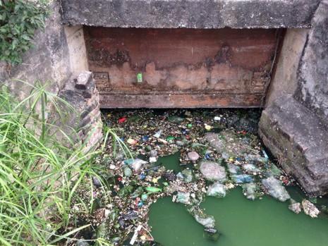 Hồ nước bốc mùi hôi thối, người dân 'cố thủ' trong nhà - ảnh 4