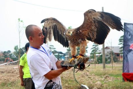 Hào hứng với hội thi chim ở Hà Nội - ảnh 15