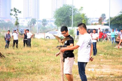 Hào hứng với hội thi chim ở Hà Nội - ảnh 11