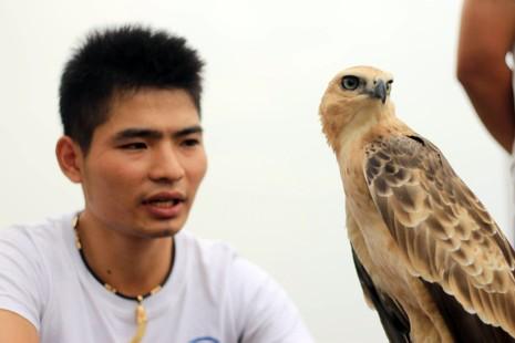 Hào hứng với hội thi chim ở Hà Nội - ảnh 2