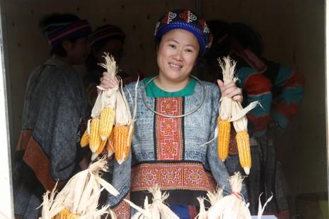 Thiếu nữ Hà thành tạo dáng bên vườn hoa tam giác mạch - ảnh 11