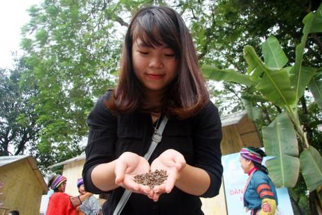 Thiếu nữ Hà thành tạo dáng bên vườn hoa tam giác mạch - ảnh 12