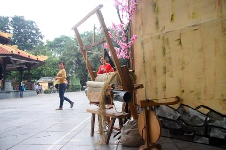 Thiếu nữ Hà thành tạo dáng bên vườn hoa tam giác mạch - ảnh 13