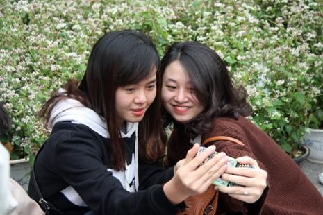 Thiếu nữ Hà thành tạo dáng bên vườn hoa tam giác mạch - ảnh 6