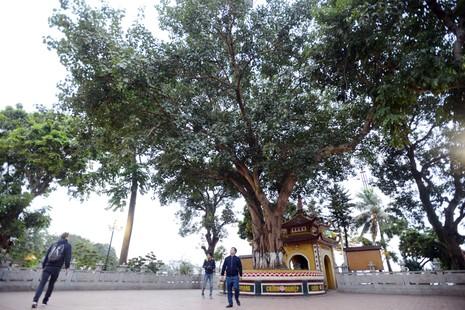 Vẻ cổ kính của ngôi chùa đẹp nhất thế giới tại Việt Nam - ảnh 7
