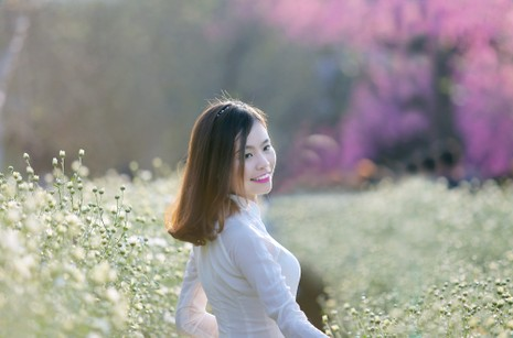 Thiếu nữ Hà thành 'đọ sắc' cùng hoa cúc họa mi - ảnh 14