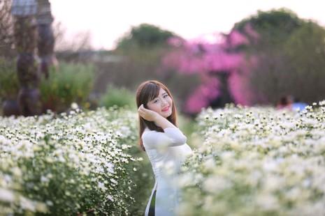 Thiếu nữ Hà thành 'đọ sắc' cùng hoa cúc họa mi - ảnh 9